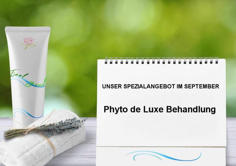 Aktionsangebot: Phyto de Luxe Behandlung